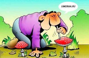 картинка, как наркоман нюхает грибы