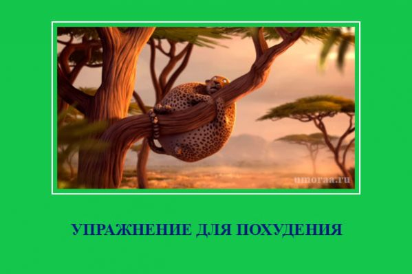 демотиватор с леопардом который висит на дереве и не знает как спуститься на землю