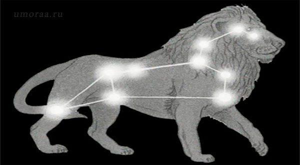 Весёлый Зодиак — прикольная подборка шуток о гороскопах