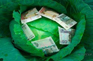 От купюр — прикольные анекдоты о деньгах